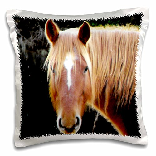 3dRose pc_51785_1 Head section of brown horse-Pillow Case, 16 by (Horse Head Pillow)