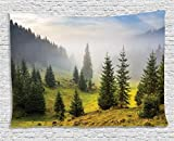 Nature Tapestry Forest Farm House Decor by Ambesonne, Trees on Meadow Between Hillsides with Conifer Forest in Fog before Sunrise, Bedroom Living Room Dorm Wall Hanging, 80 X 60 Inches, White Green