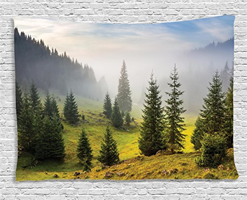 estry Forest Farm House Decor, Trees on Meadow Between Hillsides with Conifer Forest in Fog before Sunrise, Bedroom Living Room Dorm Wall Hanging, 60 X 40 Inches, White Green (Meadow Green Display)
