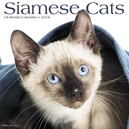 Siamese Cats 2018 Calendar