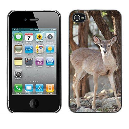 Premio Sottile Slim Cassa Custodia Case Cover Shell // F00014093 Cerf de Virginie // Apple iPhone 4 4S 4G