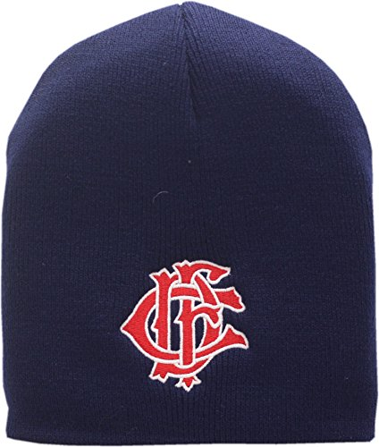Chicago Fire Department Skull Knit Hat Letternest Logo As Seen on TV 13374