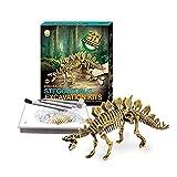 Dinosaur Digging Kit – Science Experiments for Kids – Discover Dinosaur Bones - Stegosaurus offers