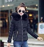 Feilongzaitianba Winter Jacket Women Winter Coat Women Fur Collar Hooded Warm Winter Coat & Parkas S-Xxl Black S