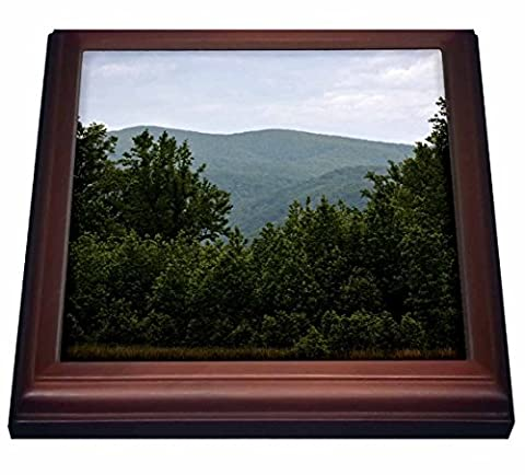 3dRose WhiteOaks Photography and Artwork - Mountains - Mountains at Cades Cove is a scene in the Smokey Mountains - 8x8 Trivet with 6x6 ceramic tile - Cades Cove Smokey Mountains