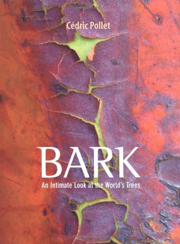 Bark: An Intimate Look at the World's Trees - 51x6hs36jfL - Bark: An Intimate Look at the World's Trees