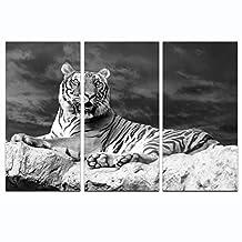 "Live Art Decor - Alert Tiger Canvas Wall Art,Black and White Animal Tiger Picture Giclee Print Art,Modern Living Room Office Wall Decor Artwork (16""x32""x3pcs)"