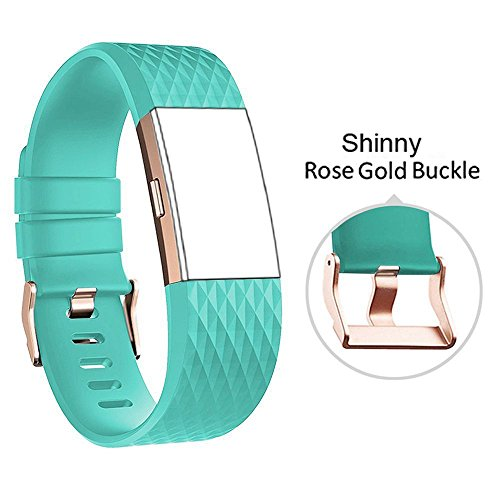 (DB for Fitbit Charge 2 Bands Rose Gold Buckle,Charge 2 Sport Replacement Bands Lavender, Fitbit Charge 2 Accessory Wristbands Large)