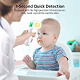 CocoBear Non-Contact Forehead Digital Thermometer