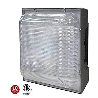 LED Canopy Light, Square Ceiling Lights, 5000K 100-277Vac IP65 Waterproof for Gas Station Warehouse Car Wash