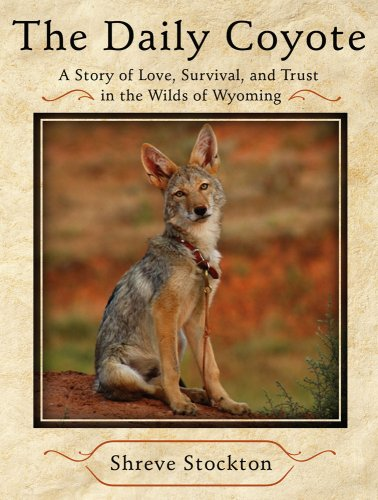 the-daily-coyote-a-story-of-love-survival-and-trust-in-the-wilds-of-wyoming