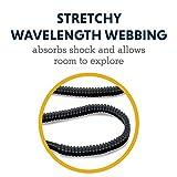 RUFFWEAR, Roamer Dog Leash, Adjustable Stretch Lead for Running, Obsidian Black, Large