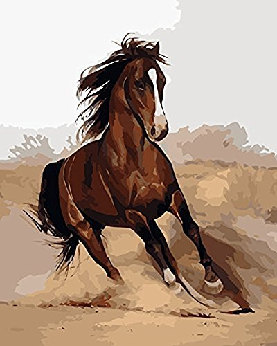 JynXos Wooden Framed Paint By Number Animals Linen Canvas DIY Painting - Horse Chuma