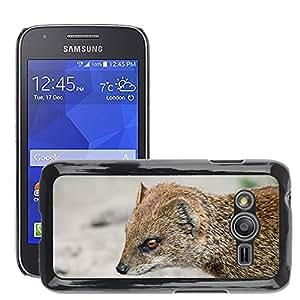 Etui Housse Coque de Protection Cover Rigide pour // M00153390 Mangosta Rojo Piel // Samsung Galaxy Ace4 / Galaxy Ace 4 LTE / SM-G313F