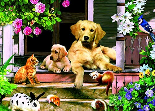 (JOLOMOY Paint by Numbers Kits for Adults, DIY Digital Oil Painting by Number for Kids Beginner - Golden Retriever Dog Puppy Cat Rabbit Bird Flowers Garden 16X20 inch Number Painting (Frameless))