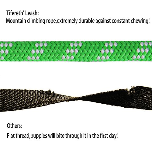 Product image of Tifereth Dog Leashes for Medium and Large Dogs Mountain Climbing Rope Dog Leash 6 ft Long Supports The Strongest Pulling Large and Medium Sized Dogs(Free Dog Training Clicker) (6 Feet, Green)