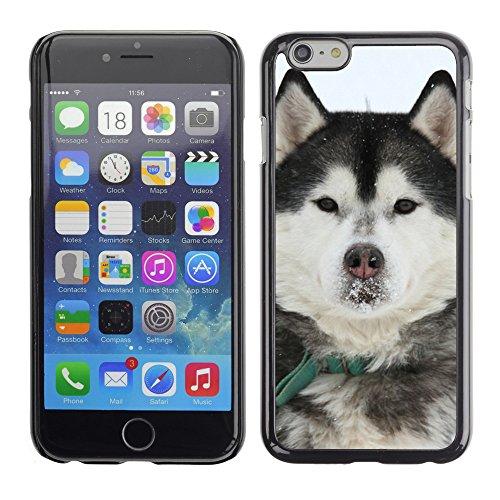 """Premio Sottile Slim Cassa Custodia Case Cover Shell // F00013311 Loup // Apple iPhone 6 6S 6G 4.7"""""""