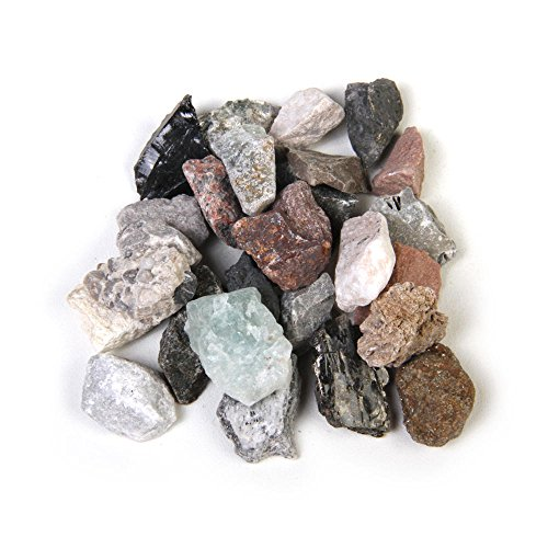 American Education Washington Rock Collection (Pack of 40) (Washington School Student Collection)