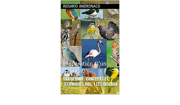 TAXIDERMIE: CONCEPTS ET TECHNIQUES VOL. 1 les oiseaux: Préparation Dun Vanneau (French Edition) eBook: Rosario Andronaco: Amazon.es: Tienda Kindle