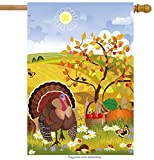 ShineSnow Thanksgiving Harvest Turkey Flower House Flag 28″ x 40″ Double Sided, Polyester Cartoon Cute Autumn Yellow Tree Pumpkin Welcome Yard Garden Flag Banners for Patio Lawn Outdoor Home Decor Review