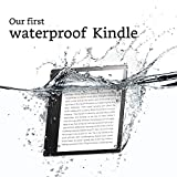 Kindle-Oasis-E-reader-7-High-Resolution-Display-300-ppi-Waterproof-8-GB-Wi-Fi-International-Version