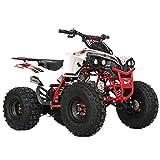 X-PRO Storm 125 125cc ATV Quad Adults ATV 4