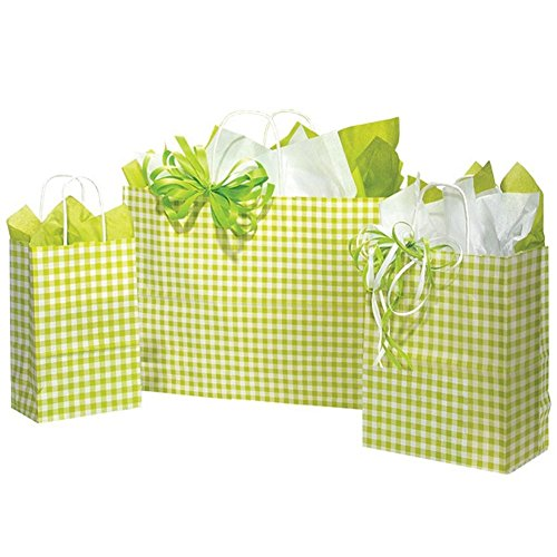 Apple Green Gingham Paper Shopping Bags - Assortment of 4 sizes - 125 Pack by NW