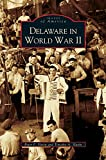 img - for Delaware in World War II book / textbook / text book