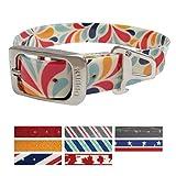 Kurgo Muck Collar Color Splash Collar Waterproof Dog Collar, Medium