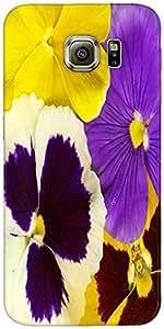 Snoogg Primer Plano De Colorido Diseñador Viola Tricolor Protectora Volver Fu...