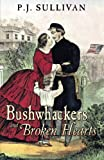 Book Cover for Bushwhackers and Broken Hearts: Letters from Missouri during the Civil War
