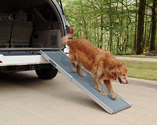 Dog Ramp For Car >> 3 Best Ramps For Dogs To Get Into Cars In 2019