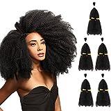 (US) SLEEK 5 Bundles Afro Kinkys Curly Hair Extensions (13
