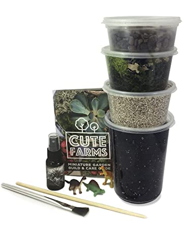 Amazon Com Terrariums Pots Planters Container Accessories