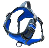 Black Rhino - The Comfort Dog Harness with Mesh Padded Vest for Small - Large Breeds | Adjustable | Reflective | 2 Leash Attachments on Chest & Back - Neoprene Padded Training Handle (Large, Blue/Gr)