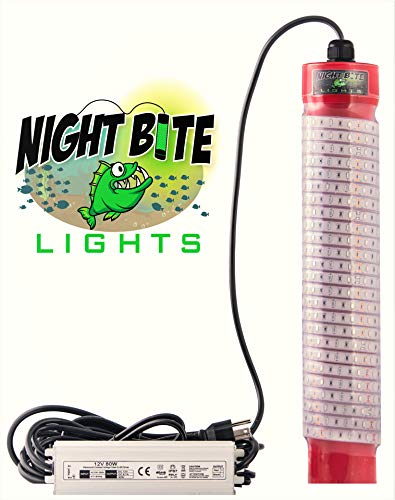 Red, White, Blue, and Green LED 110 Volt AC Fishing Light 15000 Lumens, 30' Power Cord, Dock or Pier Fishing and Decorative Light. from Night Bite Lights LLC