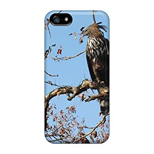 Fashion Cases For Iphone 5/5s- Changeable Hawk Eagle Defender Cases Covers