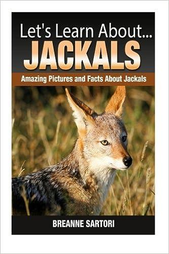 Jackals: Amazing Pictures and Facts About Jackals (Let's
