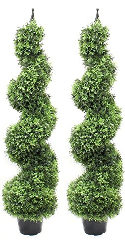 Boxwood Spiral Tree With Decorative Finial - Pre Potted Home Decor (4 Foot Fan Leaf Twin Pack) by Silk Road Home