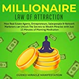 img - for Millionaire Law of Attraction: How Real Estate Agents, Entrepreneurs, Writers, Salespeople and Network Marketers can Unlock The Secrets to Wealth Miracles with Just 15 Minutes of Morning Meditation book / textbook / text book