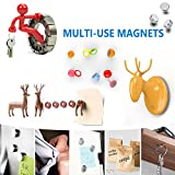Round Stainless Steel Magnets for Refrigerator by
