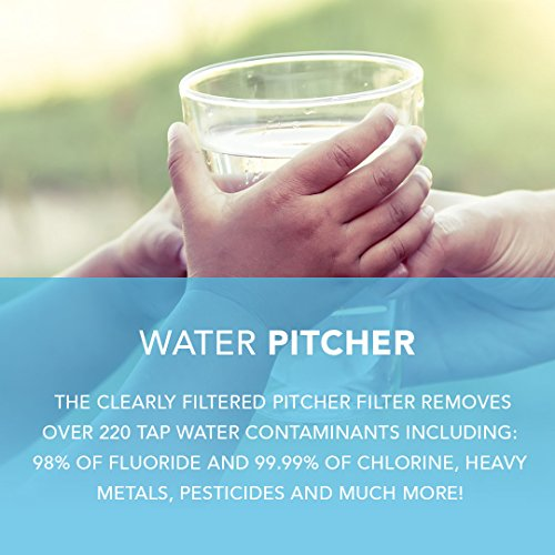 Pharmaceuticals Fluoride Chlorine Lead Clearly Filtered Pitcher Replacement Filter: Removes Chromium-6 Hormones Pesticides