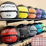 Valor Fitness WB-8 Wall Ball, 8 Lb