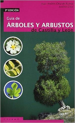Guia De Arboles Y Arbustos De Castilla Y Leon (Guías): Amazon.es: Oria de Rueda Salguero, Juan Andrés, Díez Sánchez, Justino: Libros