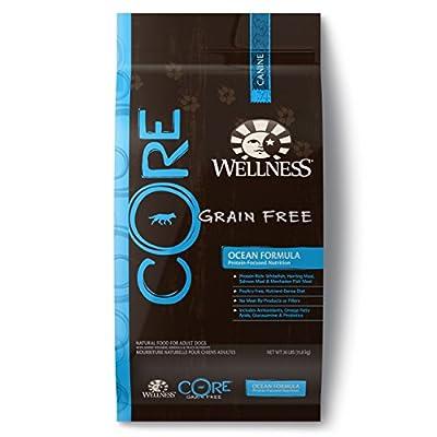 Wellness CORE Natural Grain Free Dry Dog Food, Ocean Recipe, 26-Pound Bag