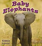 Baby Elephants, Bobbie Kalman, 0778739783