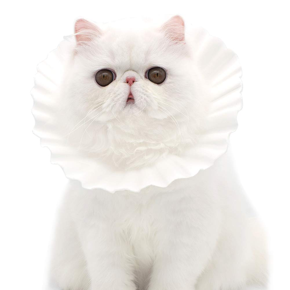 PLAFUETO 100 Pcs Cat Cone E-Collar Disposable Protective Paper Collar Comfy Anti-Bite Neck Anjustable Elizabethan Collar by PLAFUETO