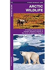 Arctic Wildlife: A Folding Pocket Guide to Familiar Animals & Plants of the Arctic and Subarctic Regions