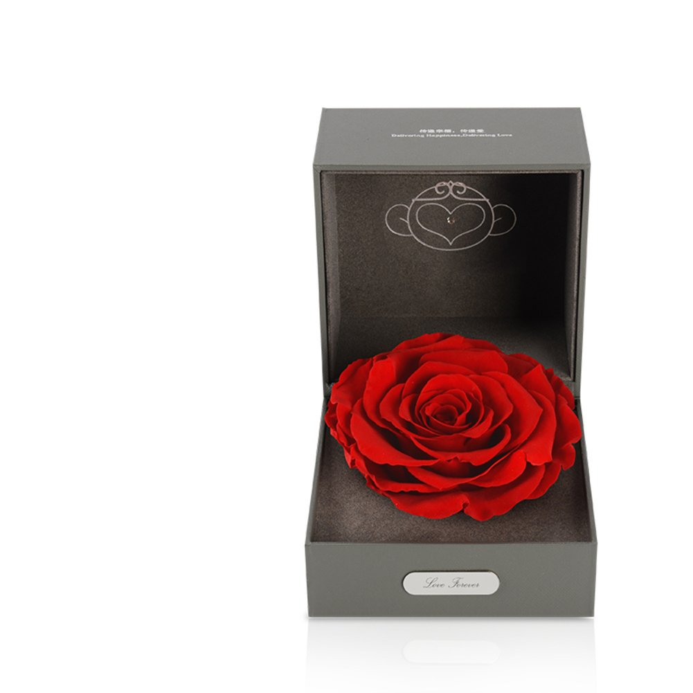 Imported Live Flower Gift Box/Fresh Colorful Roses/ Birthday Gift For Mother's Day-L