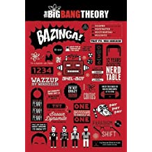 The Big Bang Theory Poster Info graphic (61cm x 91,5cm) by Close Up